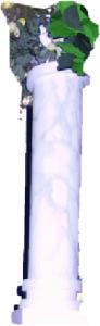colonna eucarestia